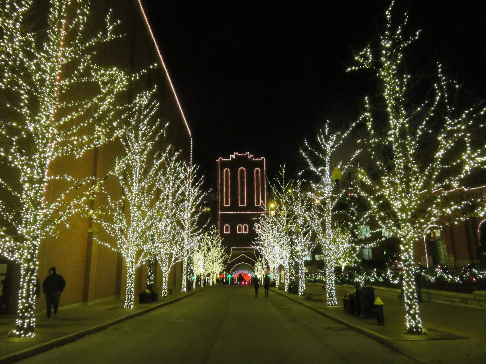 ... The Brewery Complex, As Well As The Trees, Fences, Etc., Were All  Festooned With Thousands And Thousands Of Lights! This Is An Annual Event  In St. Louis ...