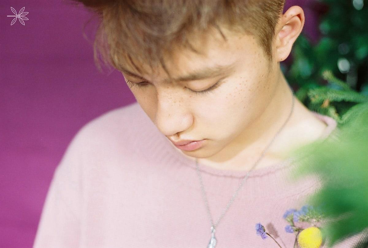 Full Hq Exo Ko Ko Bop Members Teaser Photos For The War Kokobop