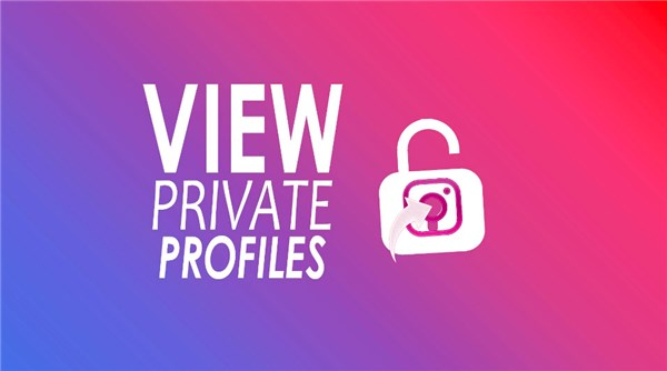 how to view a private instagram