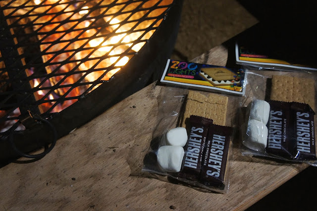 Smores at the San Antonio Zoo, Zoo Lights, Holiday Nights