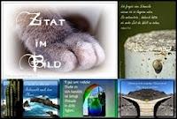 http://casa-nova-tenerife.blogspot.de/search/label/Zitat%20im%20Bild