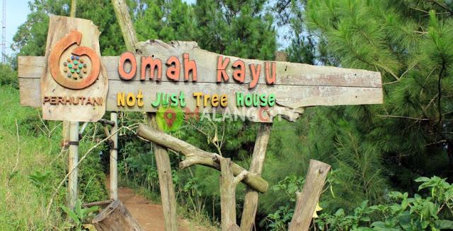 Wisata Omah Kayu Malang