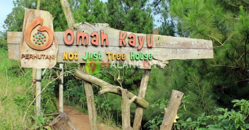 wisata omah kayu malang wisata menarik dengan alam