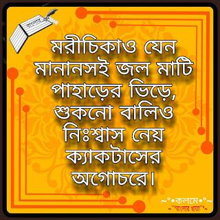 Bengali sad quotes for FB DP