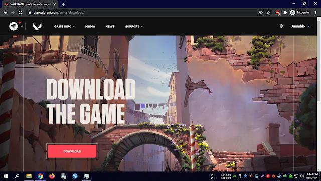 Download Installer Valorant