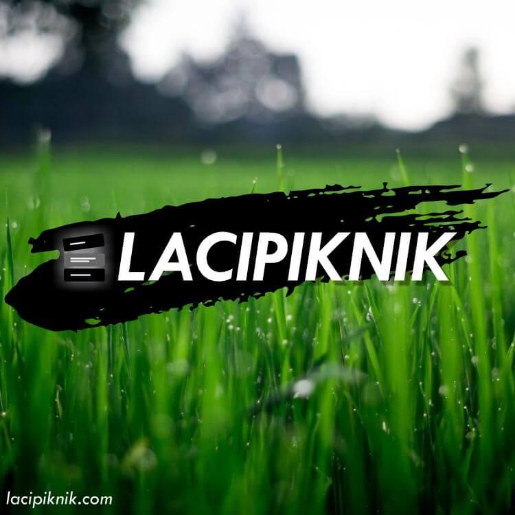 Laci Piknik