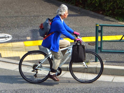 Cycling as a Transport Alternative for Japan's Elderly Motorists