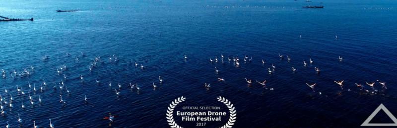 Το Δέλτα του Έβρου από ψηλά......και το βίντεο διακρίνεται πανευρωπαϊκά! (βίντεο)