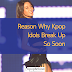 Reason Why Kpop Idols Break Up So Soon