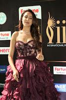 Pragya Jaiswal Sizzles in a Shantanu Nikhil Designed Gown  Exclusive 075.JPG
