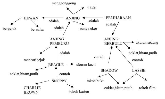 Model jaringan semantic