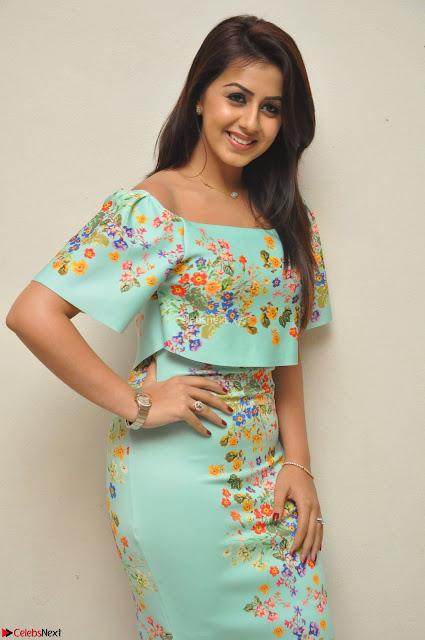 Nikki Galrani in Cute Dress Dress At Marakathamani Success Meet ~  Exclusive 002.JPG