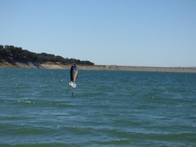Lake Cachuma Fishing