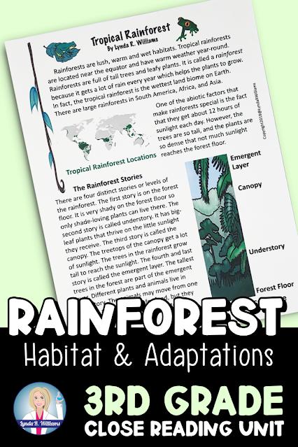 Tropical Rainforest habitat Reading Unit