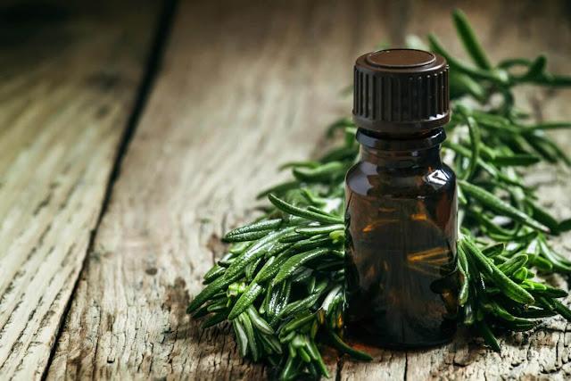 Top 10 des avantages pour la santé de l'huile de théier