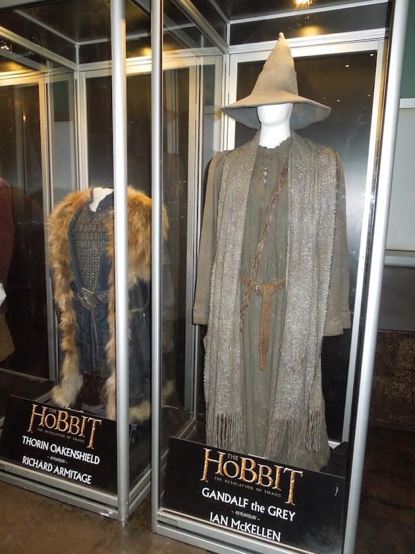 Ian McKellen Hobbit Gandalf costume