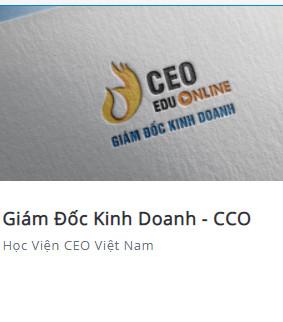 Share khóa học Giám đốc kinh doanh - CCO