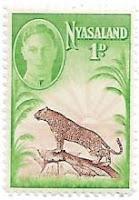 Selo Leopardo