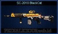 SC-2010 BlackCat