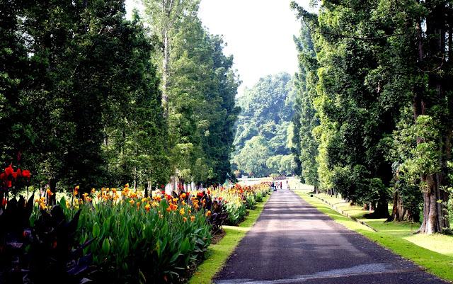 Berlibur ke Objek Wisata Menarik di Bogor yang Memuaskan