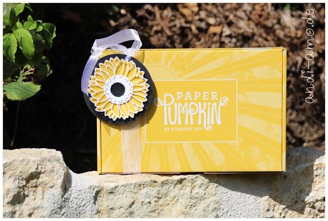 Paper Pumpkin Sonne Pur mit Sonnenblume