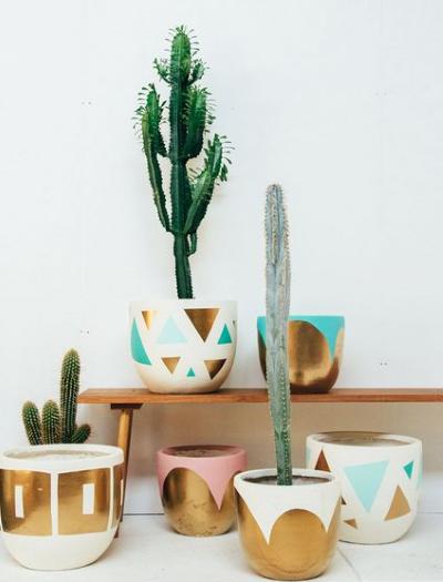 cactus deco inspiration du dimanche