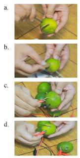 ilustrasi uji listrik dalam buah jeruk