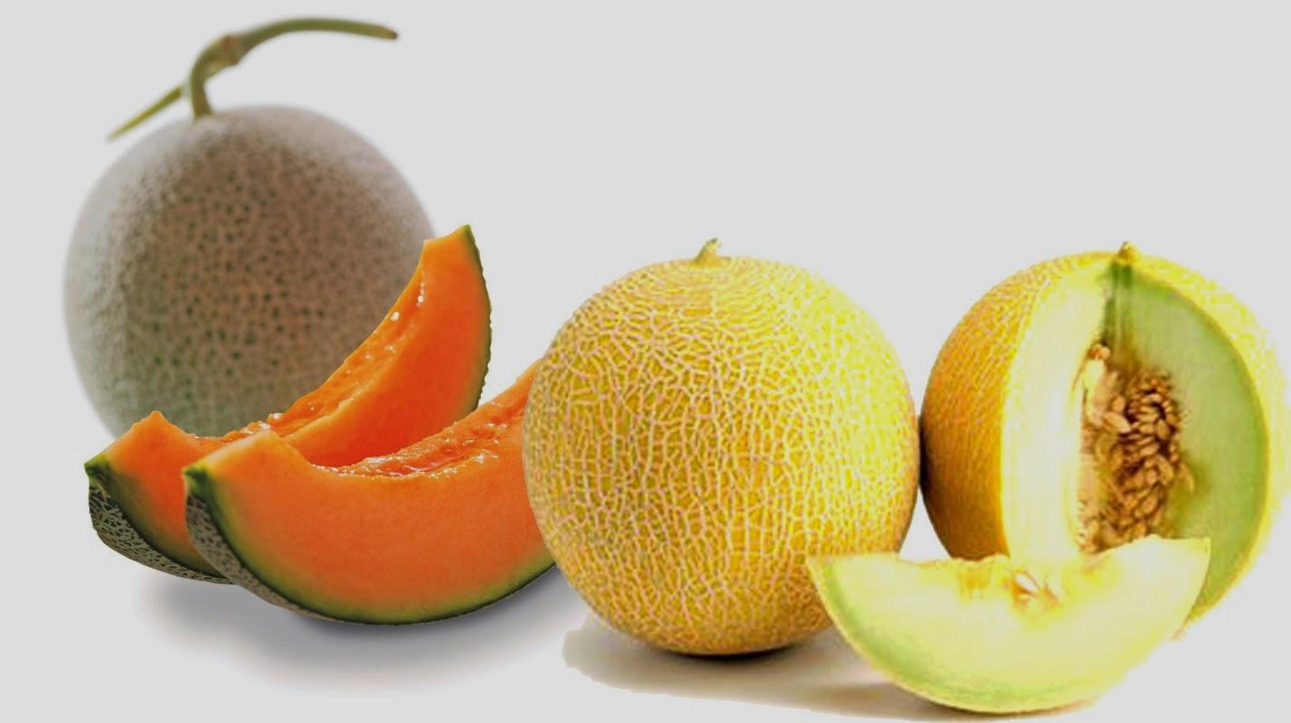Manfaat Buah Melon Untuk Kesehatan.