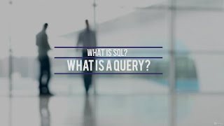 SQL Query Training for SAP Business One