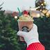 Мережа Starbucks показала святковий напій з нагоди Різдва