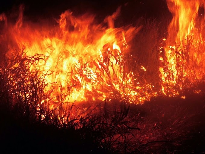 Incêndio de grandes proporções destrói vegetação no sudoeste da Bahia