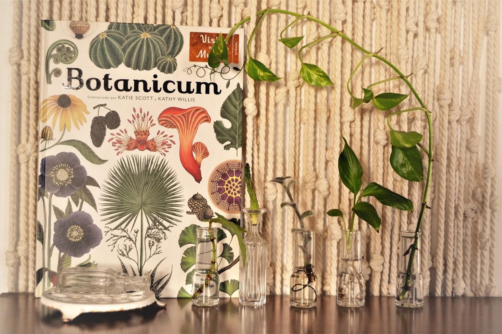 Botanicum, un museo hecho libro, álbum ilustrado de gran formato donde las plantas son las protagonistas