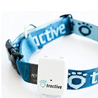 dog collar with gps tracker (tractive)