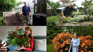 Beechgrove Gardens 2020