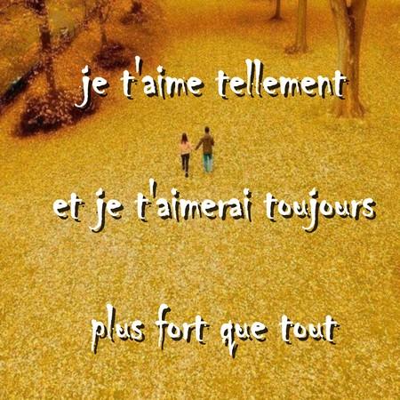 Message Et Sms Je Taime Messages Et Sms Damour