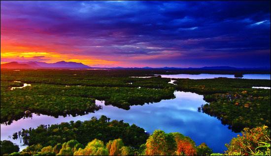 Keindahan Hayati Taman Nasional Danau Sentarum di Bumi Uncak Kapuas