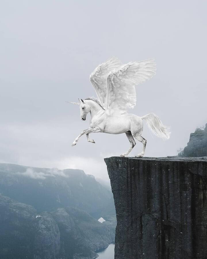 04-A Pegasus-unicorn-Murat-Akyol-www-designstack-co