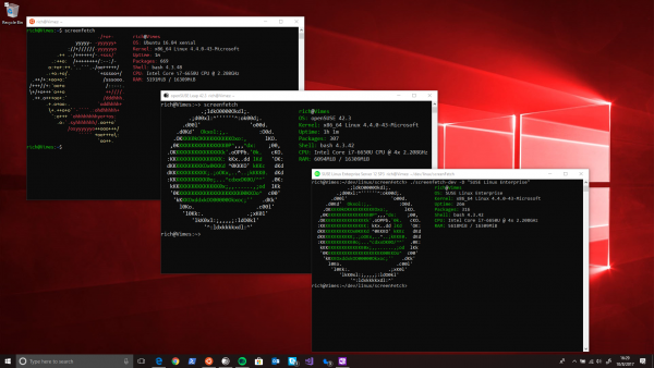 Windows Subsystem Linux Distro
