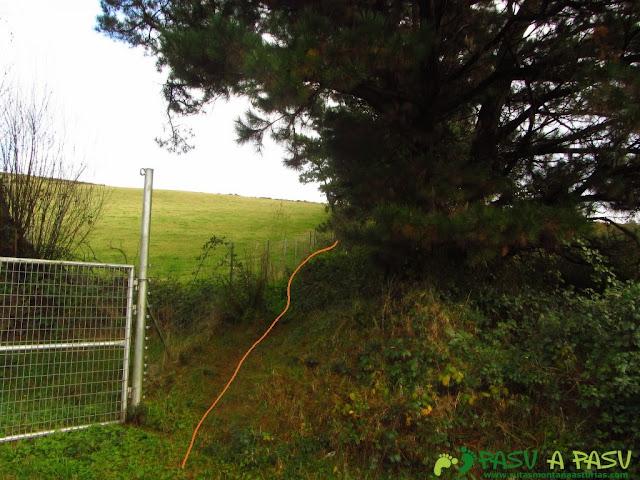 Comienzo del rodeo de la valla metálica del Xunqueira