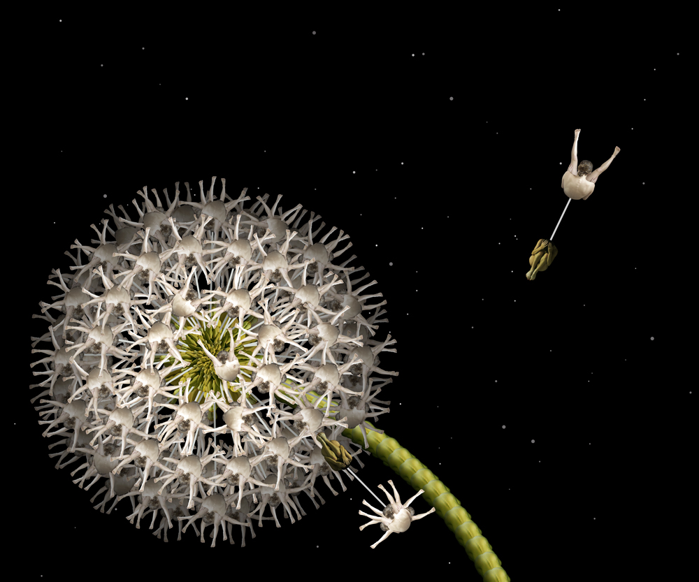 18-White-Dandelion-Cecelia-Webber-Nature-Replicated-with-Nude-Models-www-designstack-co