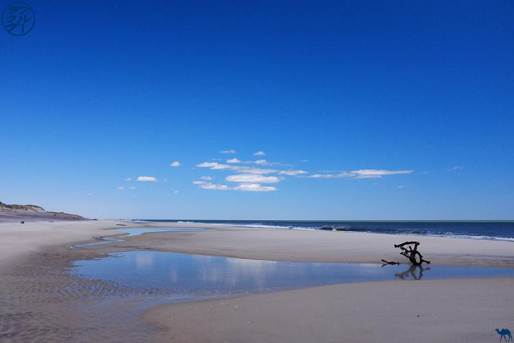 Le Chameau Bleu - Plage déserte de Davis Park sur Fire Island - Long Island New York