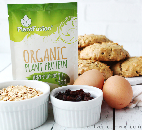 best recipe for protein cookies - made with PlantFusion organic plant protein
