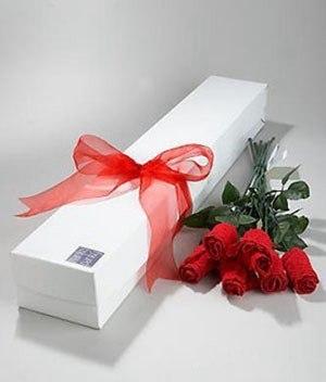 трусы, розы из трусов, розы из текстиля, розы на 8 марта , розы на День Влюбленных, розы для женщин, букет из трусов, цветы из трусов, букеты текстильные, цветы из трусов, букеты необычные, трусы в подарок, упаковка трусрв, оформление трусов, из трусов, подарки на 8 марта, мастер-классы из трусов, мастер-классы букетов, мастер-классы подарков, букет своими руками, из трусов своими руками, подарок на день святого Валентина, подарки на день всех влюбленных своими руками, подарок к дню святого Валентина своими руками, день всех влюбленных подарки, подарок на день святого Валентина парню своими руками, что подарить на день влюбленных мужу, подарки на 14 февраля, подарки на день святого Валентина, любовные подарки, подарки для влюбленных, подарок на день святого Валентина девушке своими руками подарок на день святого Валентина мужу своими руками подарок на день святого Валентина жене своими руками подарок на день святого Валентина мужчине своими руками подарок на день святого Валентина женщине своими руками подарок на день святого Валентина любимой своими руками подарок на день святого Валентина любимому своими руками Романтические подарки на день влюбленных, Полезные подарки на день влюбленных, ОригинальныеС учетом хобби любимого С учетом хобби любимого подарки на день влюбленных, подарки на 14 февраля для любимого сделать своими руками, подарки на 14 февраля для любимой сделать своими руками, подарок парню на 14 февраля идеи своими руками как сделать подарок на день святого Валентина своими руками подарки на день всех влюбленных своими руками подарки на 14 февраля своими руками оригинальные подарки на 14 февраля, интерьерный декор на 14 февраля, идеи для украшения дома на 14 февраля, идеи для украшения дома на День Влюбленных, St. Valentine's Day, День Святого Валентина идеи для оформления дома на день влюбленных, интерьерный декор на день смятого Валентина, валентинов день, День любви, День влюбленных,