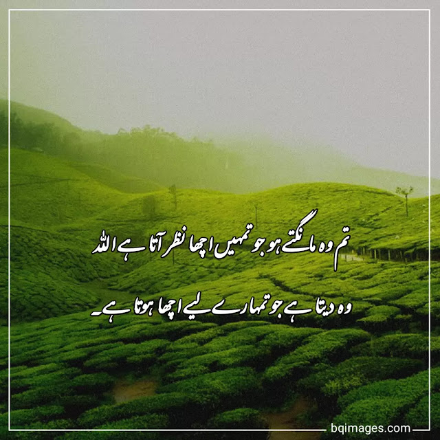 beautiful quotes about allah