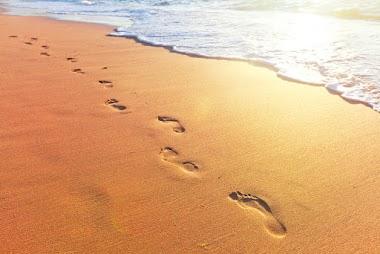 ¿Qué significa caminar con Dios?