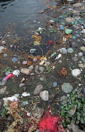 TECHORGANIC: FACTS ABOUT GANGA RIVER POLLUTION