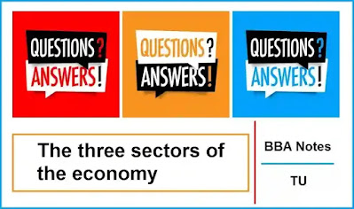 The Three Sectors of the Economy │ Important Exam Questions and Answers