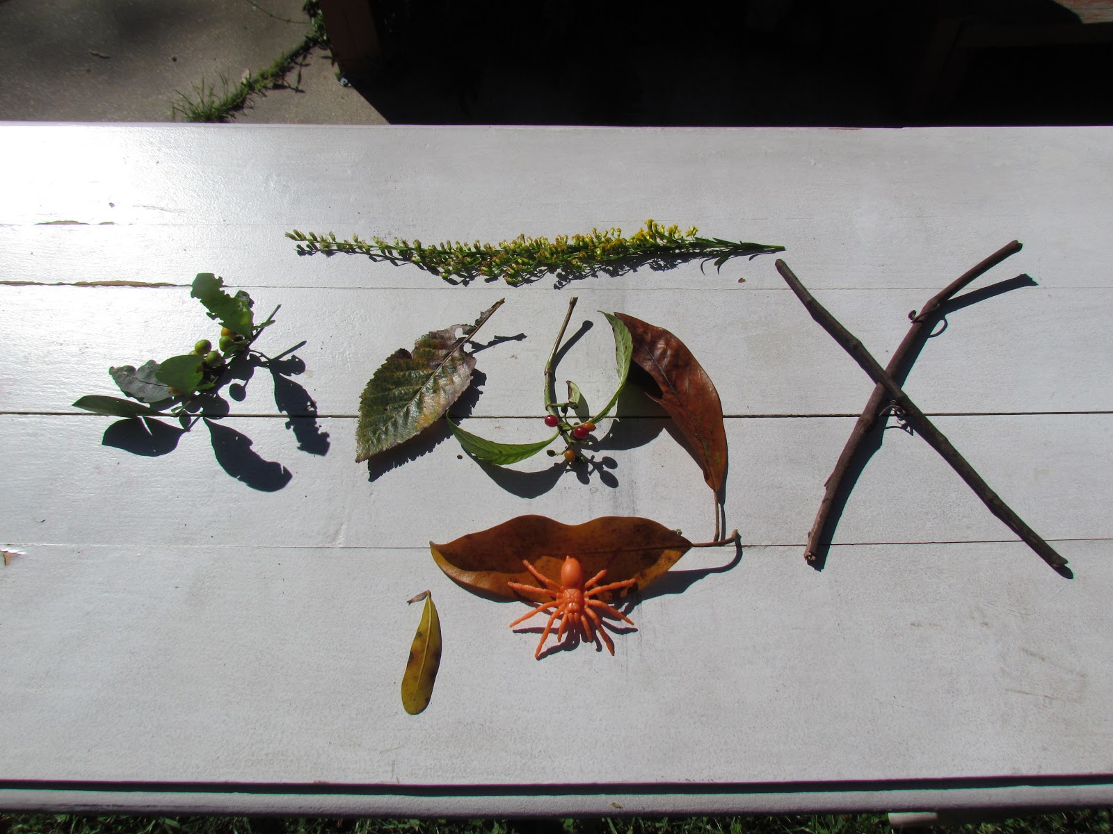 Halloween Flat Lay and Fall Decor With Orange Plastic Toy Spider and Orange Fall Leaves, Sticks, and Twigs