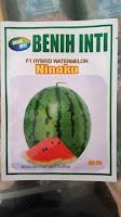 semangka merah, semangka ninaku, tanam semangka, manfaat buah semangka, jual beih semangka, toko pertanian, lmga agro
