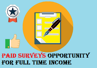 Paid Surveys Opportunity For Full Time Income